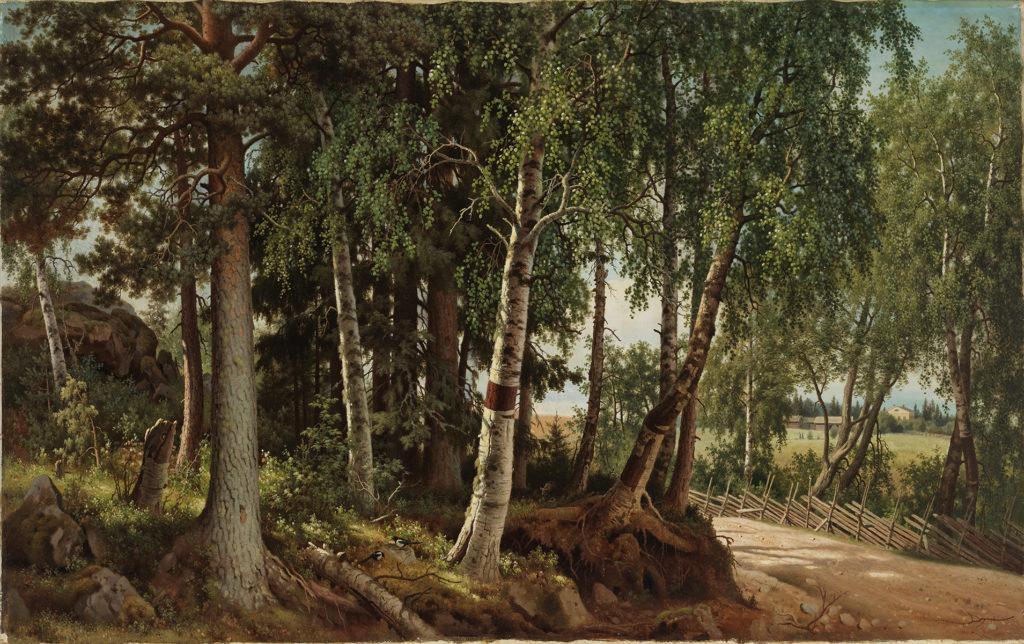 Ferdinand von Wright: Metsämaisema Haminalahdelta, 1880. Kansallisgalleria / Ateneumin taidemuseo. Kuva: Kansallisgalleria / Hannu Pakarinen
