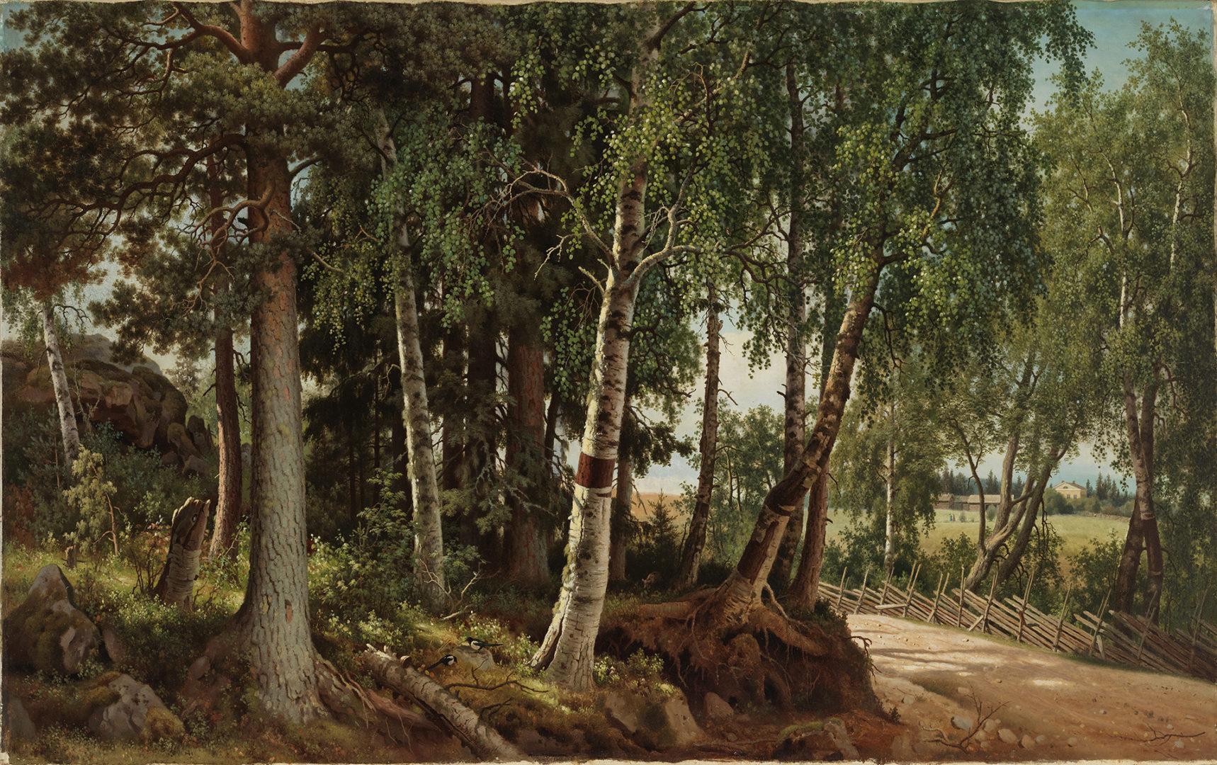 Ferdinand von Wright: Forest Landscape from Haminalahti, 1880. Finnish National Gallery / Ateneum Art Museum. Photo: Finnish National Gallery / Hannu Pakarinen