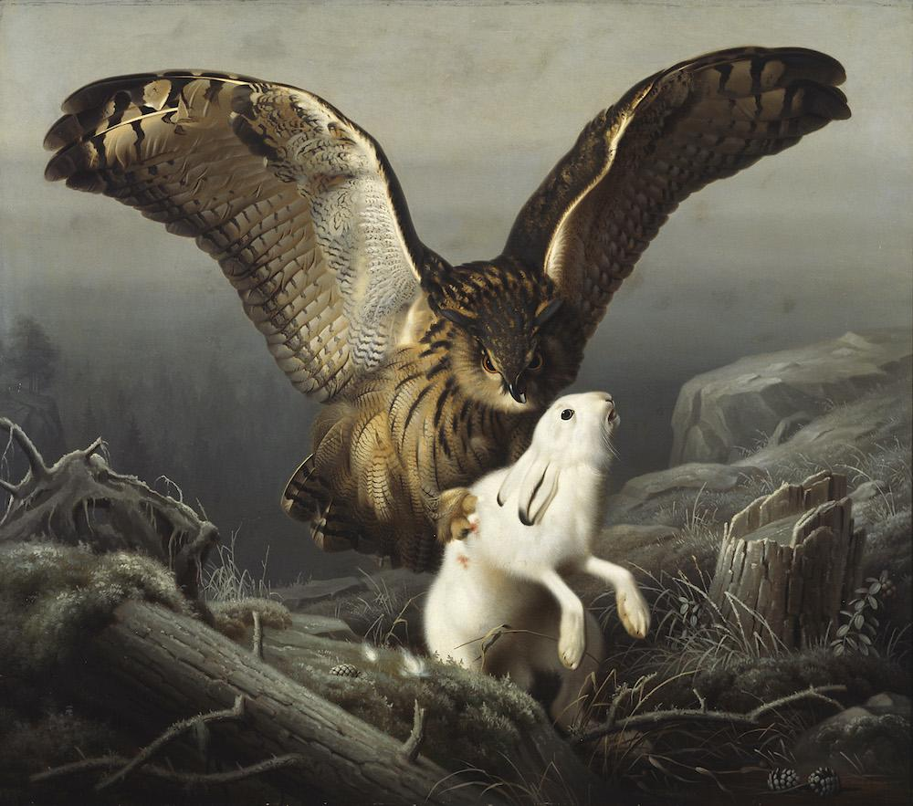 Ferdinand von Wright: Huuhkaja iskee jänikseen, 1860. Kansallisgalleria / Ateneumin taidemuseo. Kuva: Museokuva
