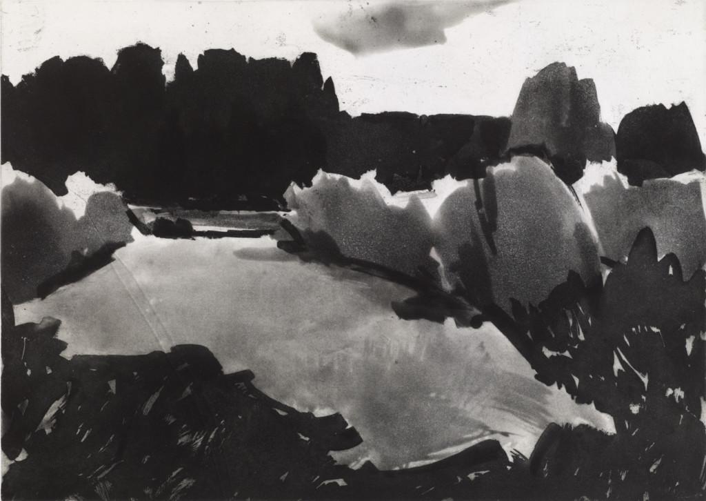 Lähes abstrakti kuvaus maisemasta, jossa puita ja vesistöä. Mustavalkoinen teos