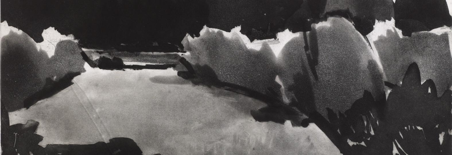 En nästan abstrakt beskrivning av ett landskap med träd och vatten. Svartvitt arbete