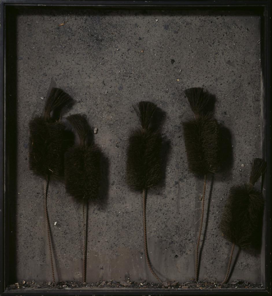 Ett arbete där fem sotborstar placeras i en låda så att de ser ut som blommor.